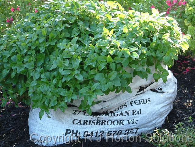 20 slot herb bag
